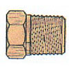 BRASS HEX PIPE PLUGS 1/8(11624)
